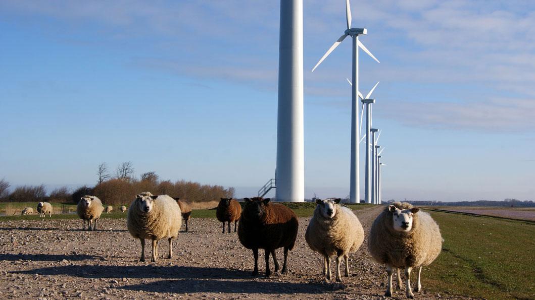 Bouw moderne windmolen
