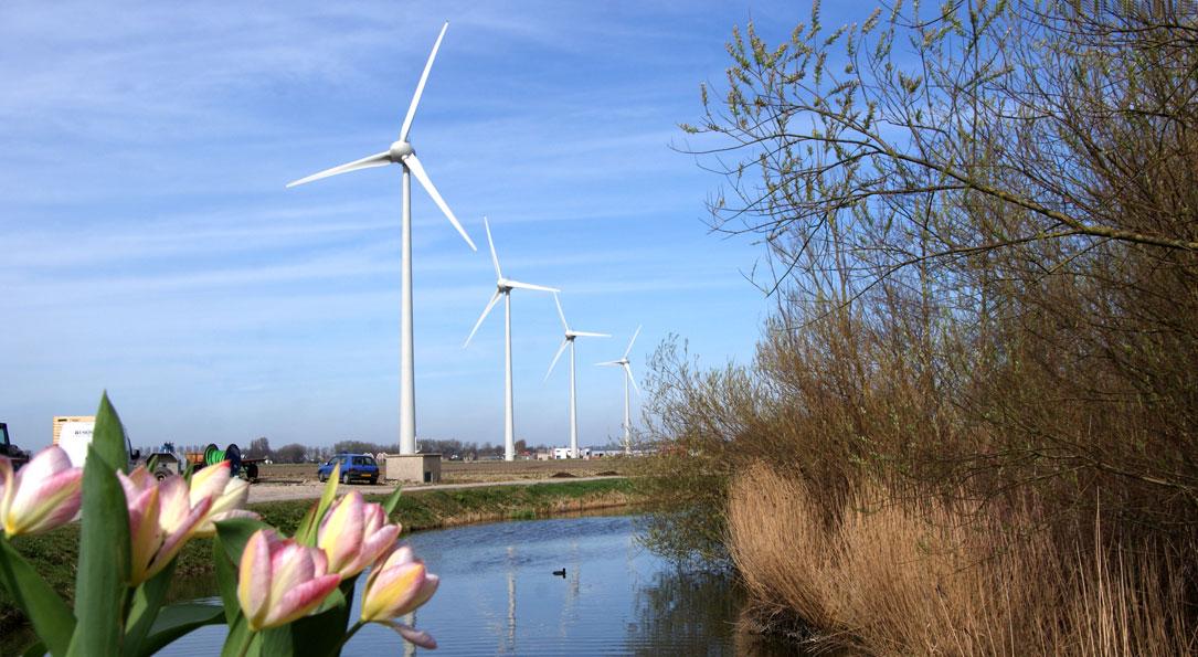 Voorjaar in Noord-Holland. Kan het nog mooier?