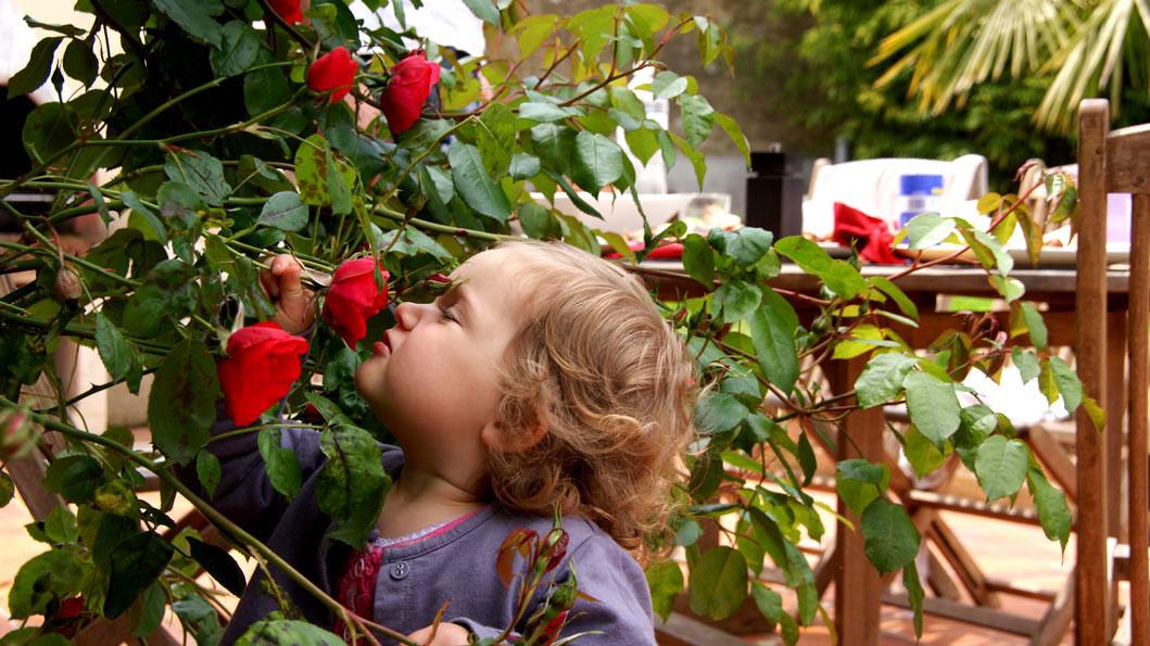 Louise ruikt aan de rozen op het terras thuis